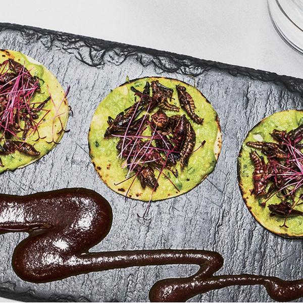 sazon restaurant santa fe, chupaline tacos